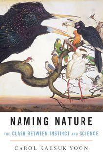 Namin nature