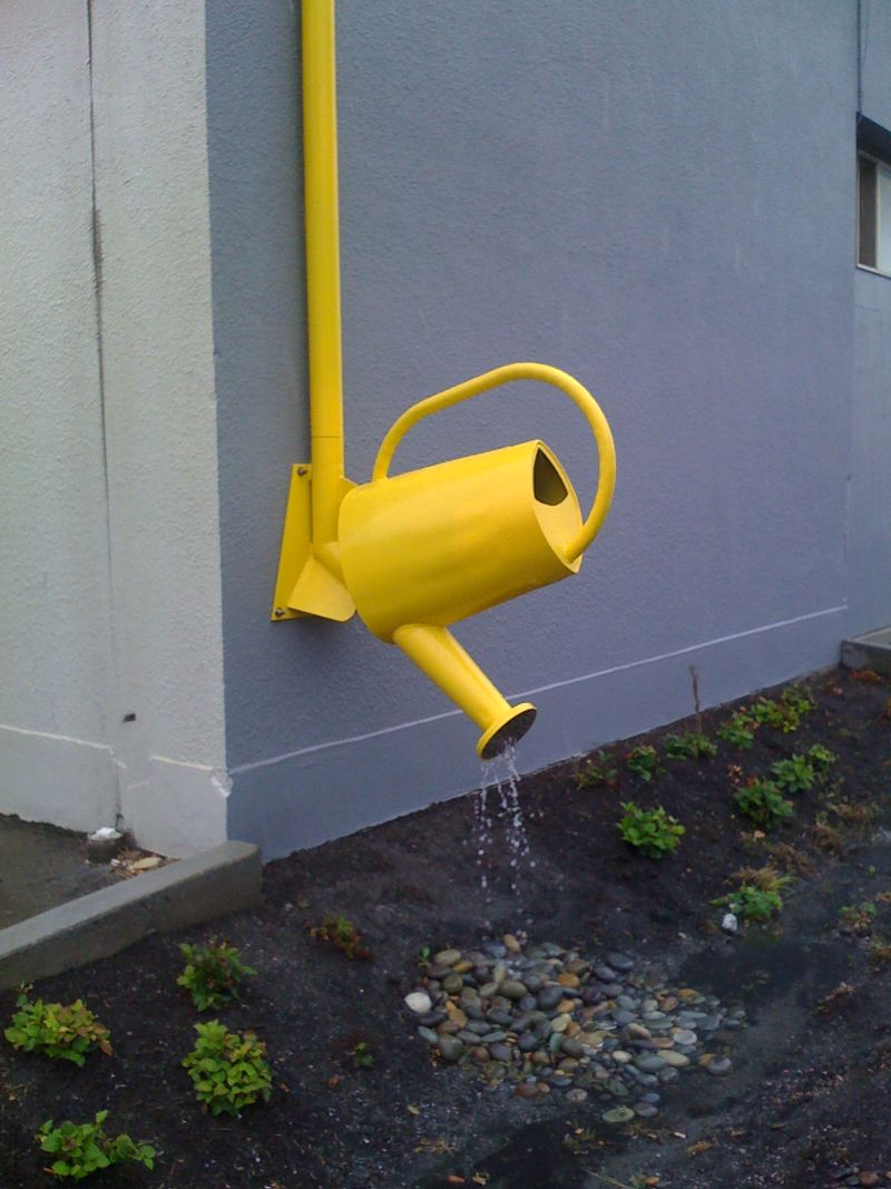 Anacortes watering can1