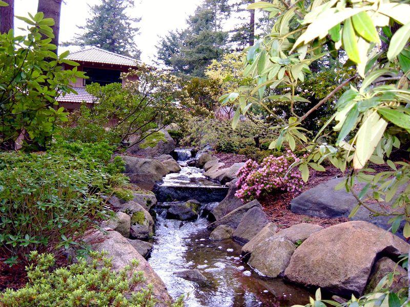 Watercourse4-02-05