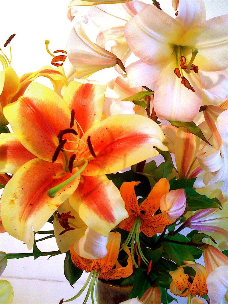 Lily bouquet2