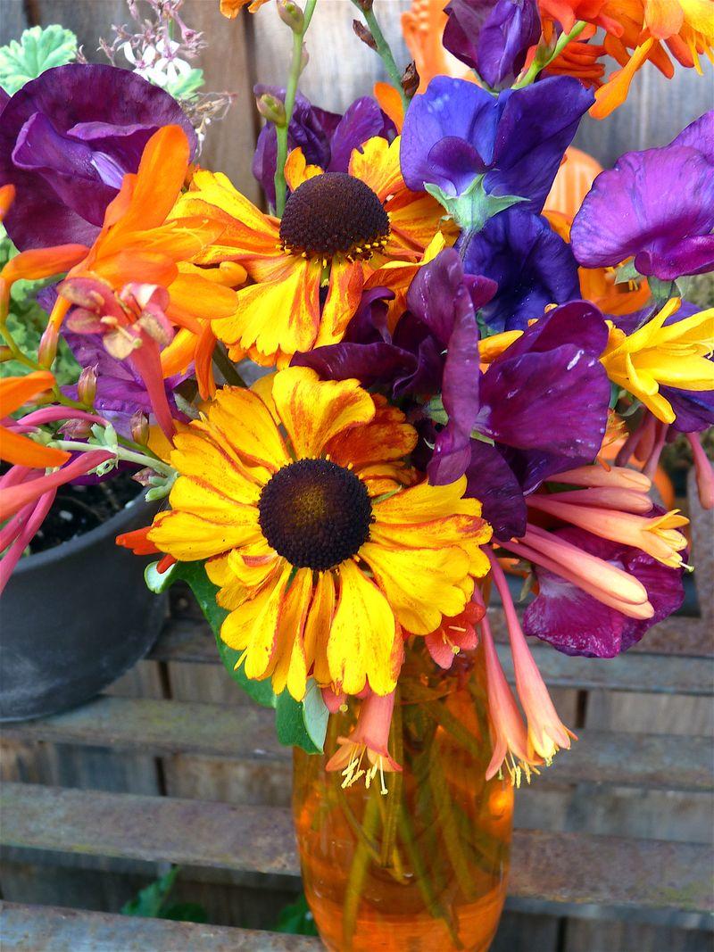 Sneezeweed bouquet2