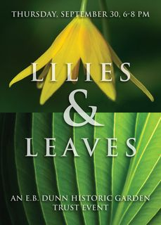 Lilies &leaves