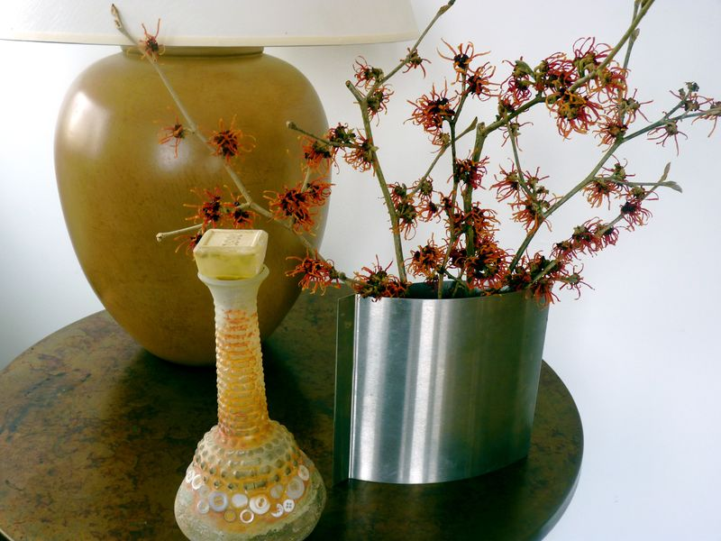Witch hazel vase