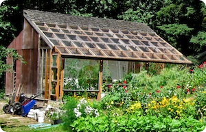 Whidbey-institute-greenhouse_fit_300x300