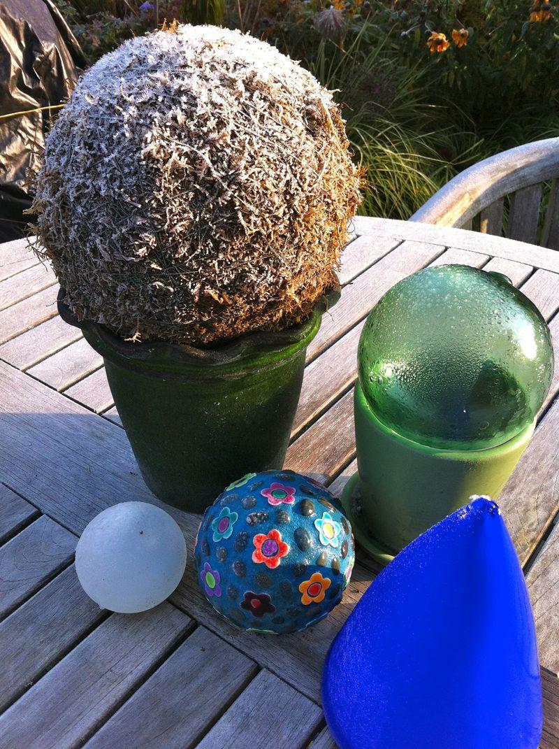 Moss frost