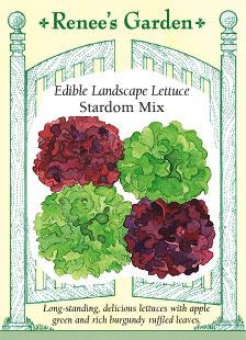 Lettuce-landscape-f