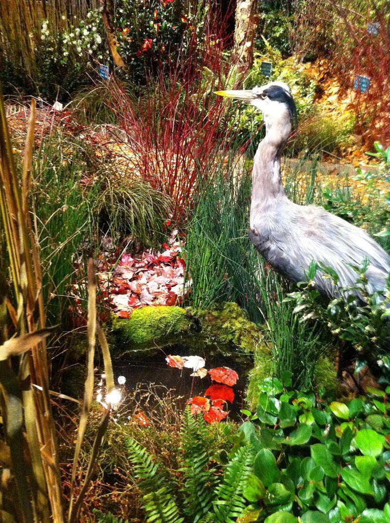 Show heron