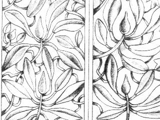 Detail,2,100 copy