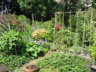 Adelaide-community-garden