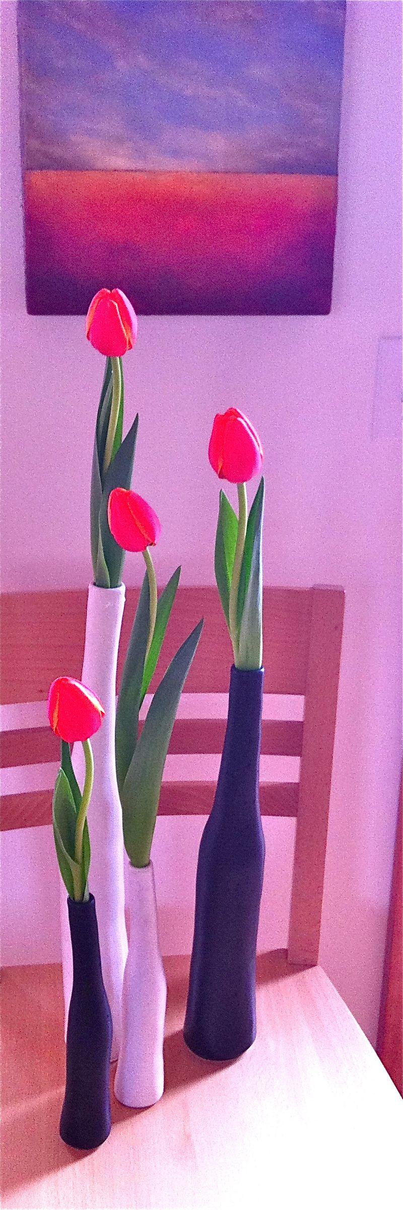 Tulip cartoon