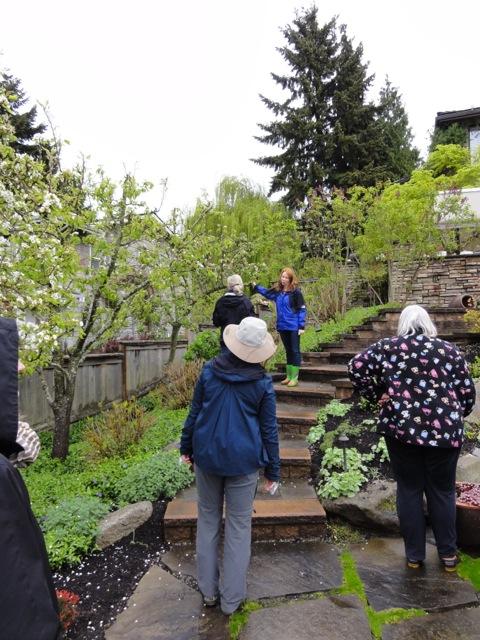 Guests:garden