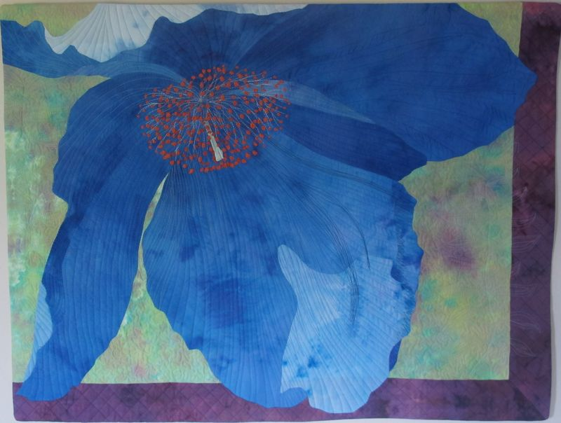 Blue poppy quilt