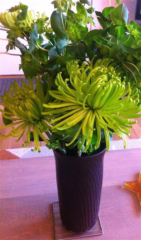 Greenw:vase