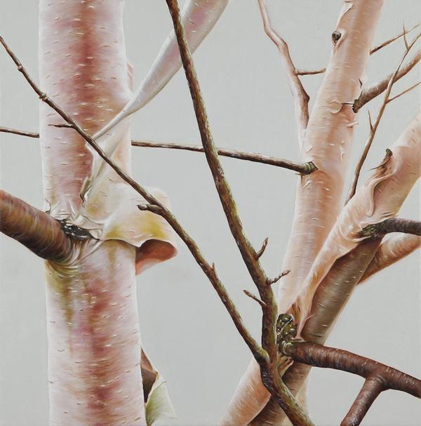 Woods-tree-11