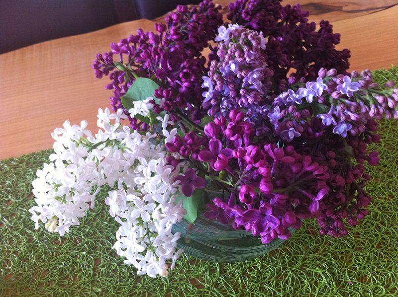 Bowl of lilacs